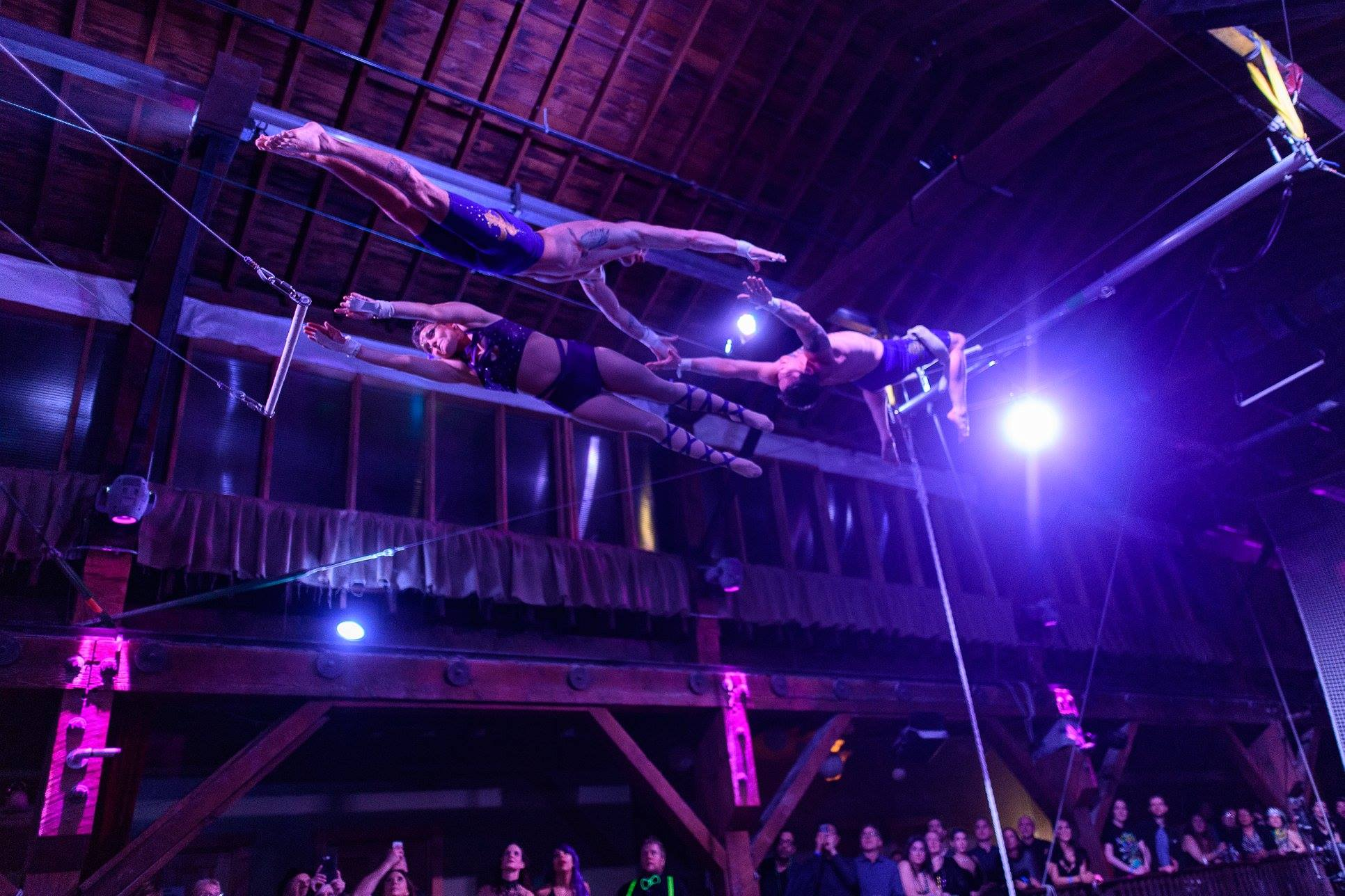 Party Attendees at Emerald City Trapeze Arts